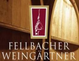 fellbacher-weingaertner-eg_1284444400